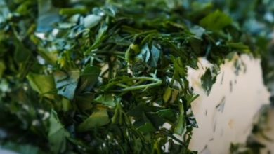 Photo of Вкусный сыр с зеленью